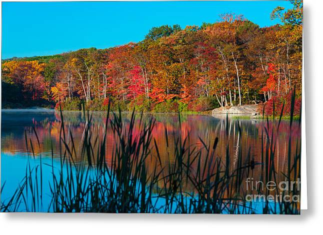 Harvest Moon Greeting Cards - Autumn Lake Greeting Card by Anthony Sacco