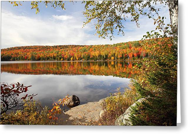 Riviere Greeting Cards - Autumn Landscape in La Mauricie National Park Greeting Card by Pierre Leclerc Photography