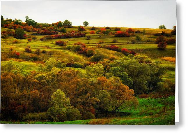 Romania Photographs Greeting Cards - Autumn Landscape in Romania  Greeting Card by Mountain Dreams