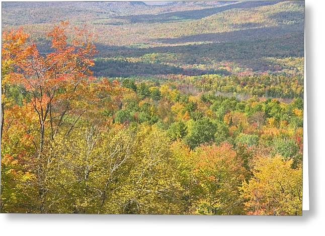 Fall Colors Greeting Cards - Autumn Landscape Mount Blue State Park Weld Maine Greeting Card by Keith Webber Jr