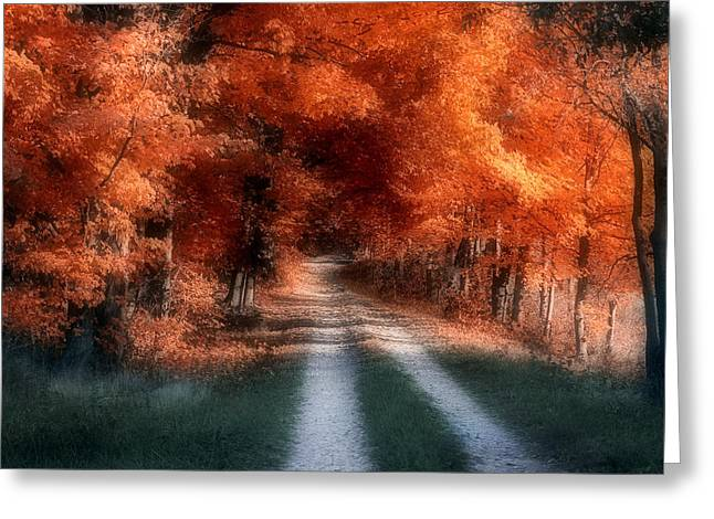 Autumn Lane Greeting Card by Tom Mc Nemar