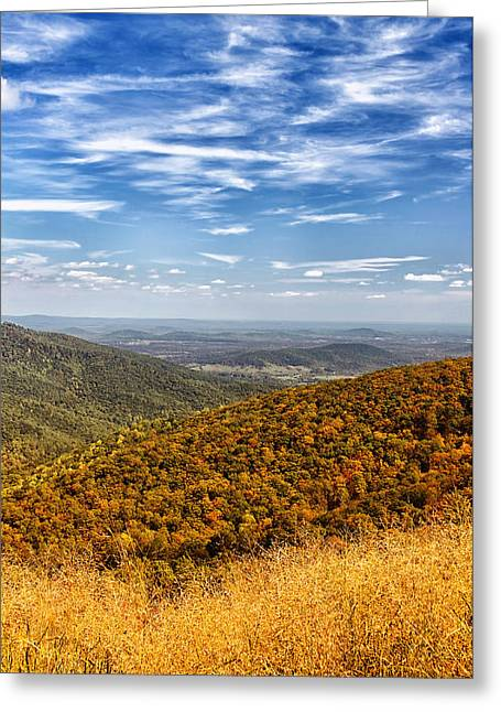 Autumn Layers Greeting Card by Kim Hojnacki