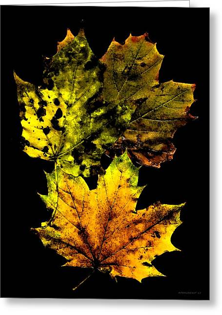 Stained Greeting Cards - Autumn Leafs in my Memory Greeting Card by Mario  Perez
