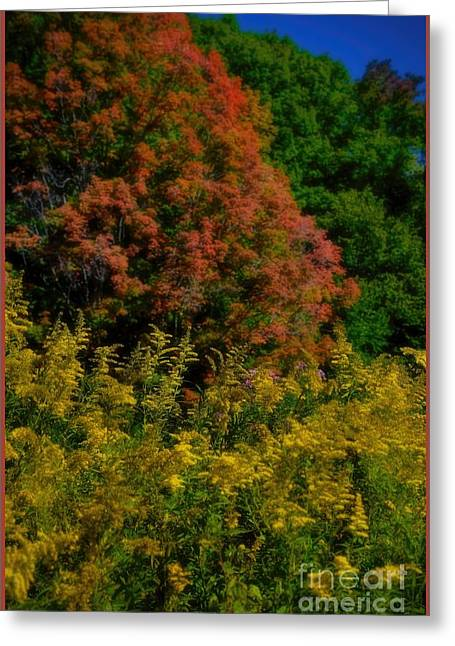 A Summer Evening Greeting Cards - Autumn Leaves and Wilflowers Greeting Card by Henry Kowalski