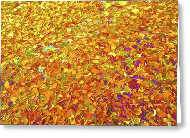 Fall Photos Paintings Greeting Cards - Autumn Leaves Greeting Card by David Letts