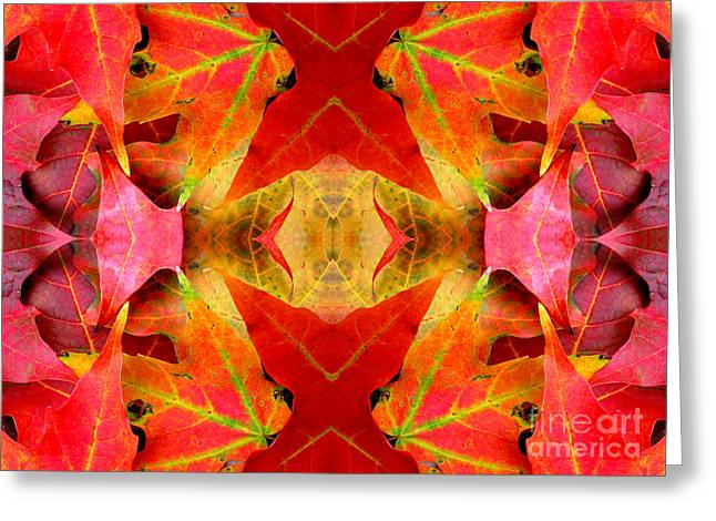 Autumn Leaves Mirrored Greeting Card by Rose Santuci-Sofranko