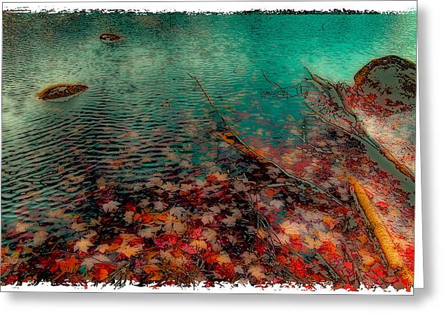 Autumn Leaves On Cary Lake - Abstract Greeting Card by David Patterson