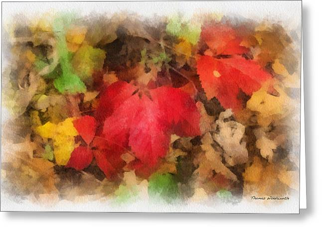 Featured Art Greeting Cards - Autumn Leaves Photo Art 04 Greeting Card by Thomas Woolworth