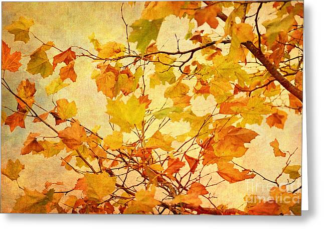 Autumn Scenes Digital Art Greeting Cards - Autumn Leaves with Texture Effect Greeting Card by Natalie Kinnear