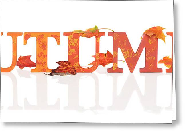 Imprint Greeting Cards - Autumn Letters With Leaves Greeting Card by Amanda And Christopher Elwell