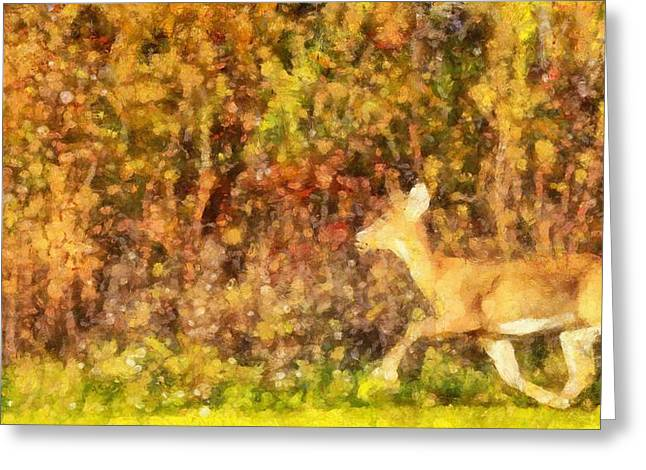 Reds Of Autumn Mixed Media Greeting Cards - Autumn Light Deer In Forest Greeting Card by Dan Sproul