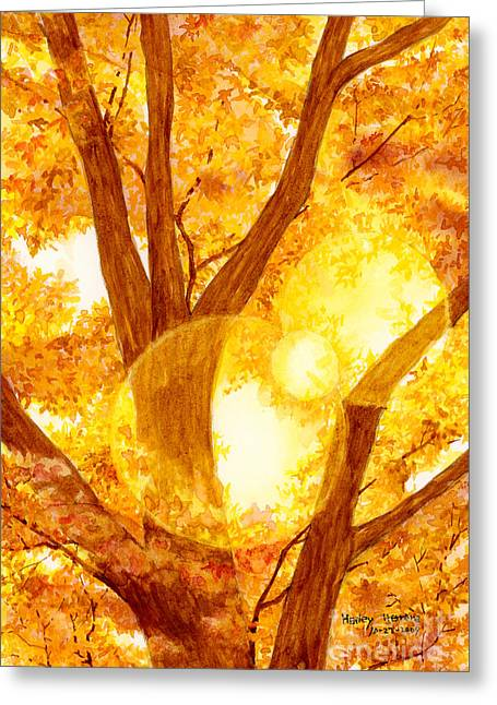Monochrome Paintings Greeting Cards - Autumn Light Greeting Card by Hailey E Herrera