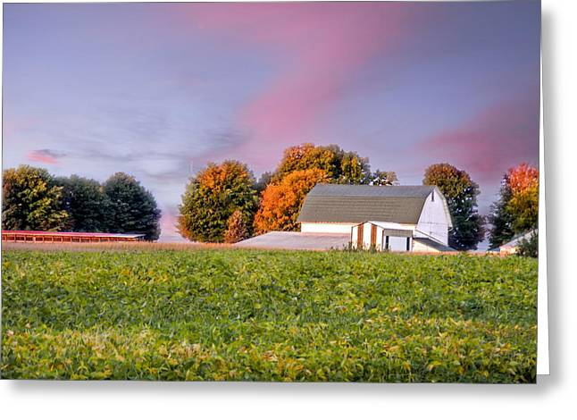 Autumn Light Greeting Card by Mary Timman