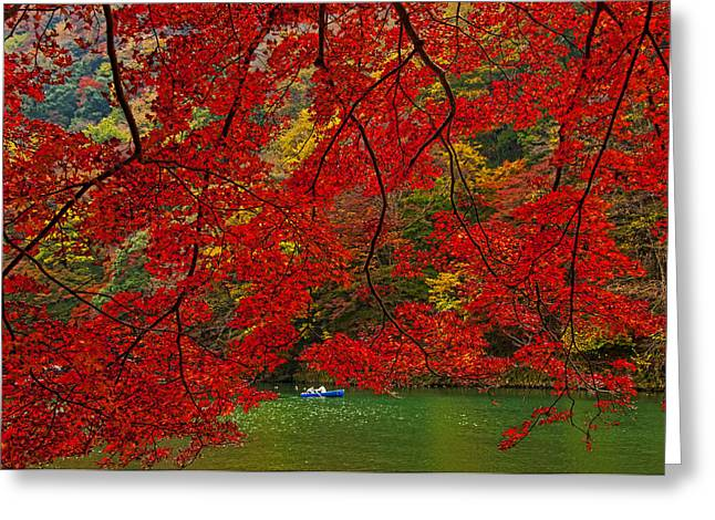 Red Leaves Greeting Cards - Autumn Love Greeting Card by Midori Chan