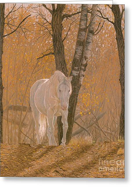 White Drawings Greeting Cards - Autumn Magic Greeting Card by Laura Klassen