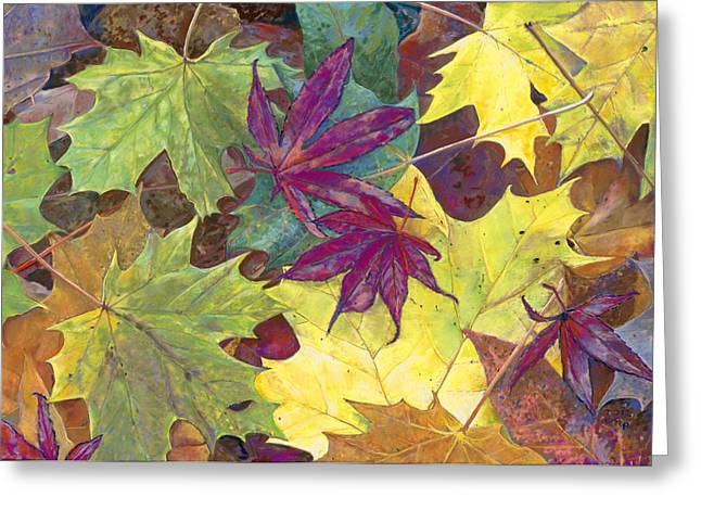 Birdseye Greeting Cards - Autumn Maple Leaves Greeting Card by Nick Payne