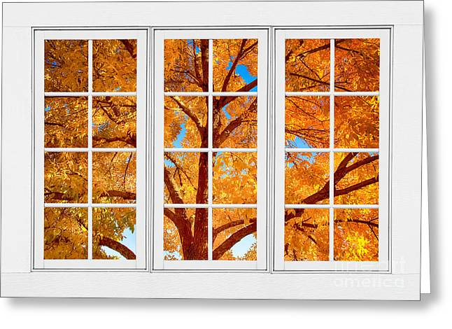 Room With A View Greeting Cards - Autumn Maple Tree View Through A White Picture Window Frame Greeting Card by James BO  Insogna