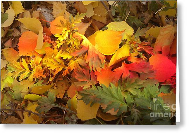 Coloured Greeting Cards - Autumn Masquerade Greeting Card by Martin Howard
