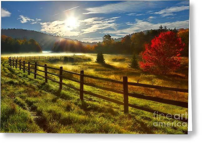 Falls Framed Prints Greeting Cards - Autumn Meadow Sunrise I - West Virginia Greeting Card by Dan Carmichael