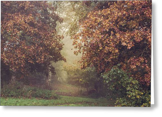 Autumn Greeting Cards - Autumn mist in a woodland glade Greeting Card by Chris Fletcher