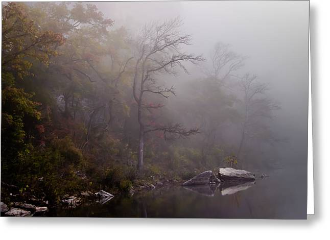 Jamesbarber Greeting Cards - Autumn Mist Greeting Card by James Barber