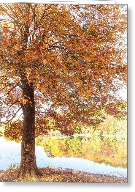 Colors Of Autumn Greeting Cards - Autumn Moment Greeting Card by Karol  Livote
