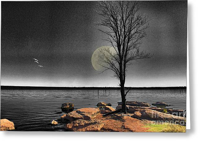 Bare Trees Greeting Cards - Autumn Moon Greeting Card by Betty LaRue