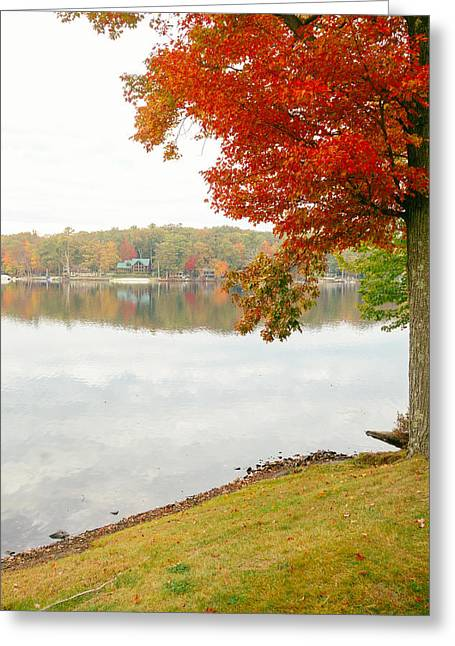 Autumn Morning At The Lake - Pocono Mountains - Pennsylvania Greeting Card by Vivienne Gucwa