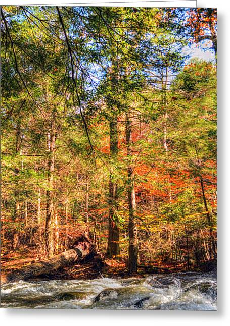 Water Flowing Greeting Cards - Autumn Morning at the Rapids Greeting Card by Geoffrey Coelho