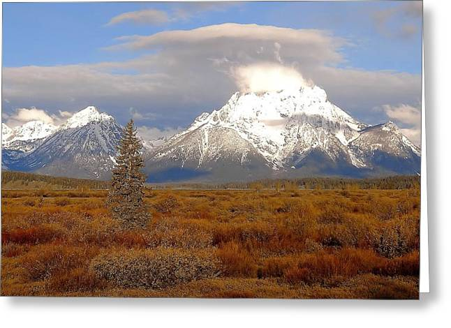 The Plateaus Greeting Cards - Autumn Morning In The Tetons Greeting Card by Dan Sproul