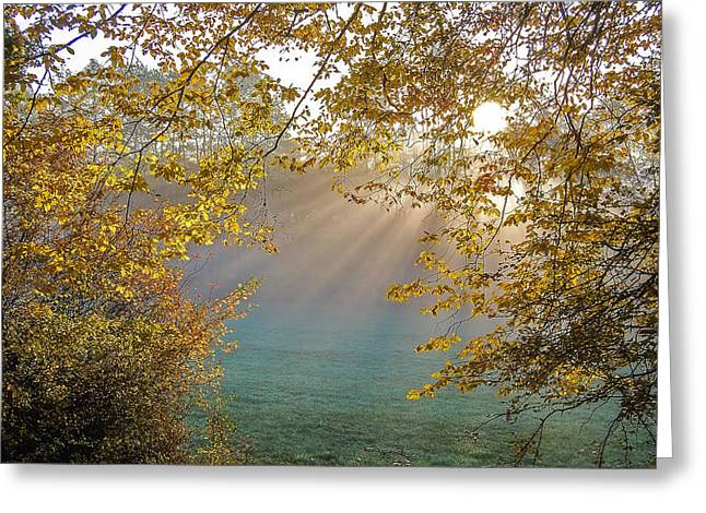 Crepuscular Rays Greeting Cards - Autumn Morning Greeting Card by Mountain Dreams