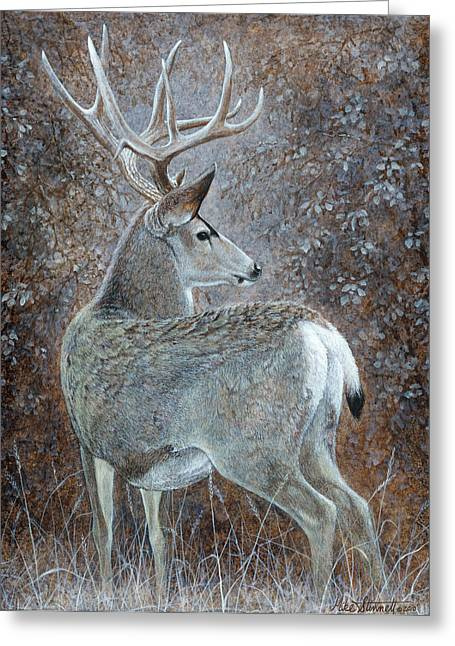 Autumn Muley Greeting Card by Mike Stinnett