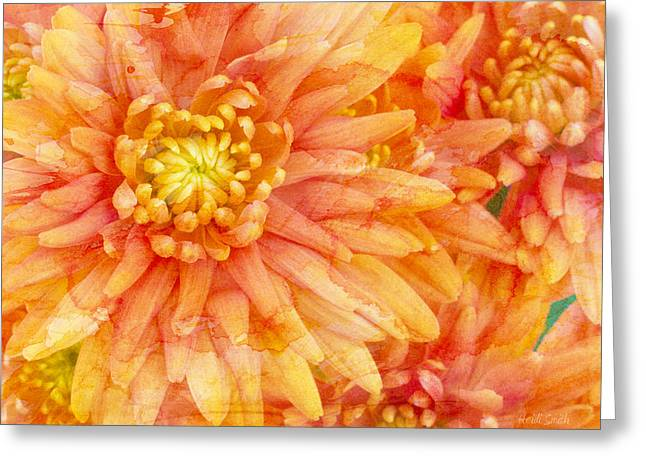 Orange Abstract Greeting Cards - Autumn Mums Greeting Card by Heidi Smith