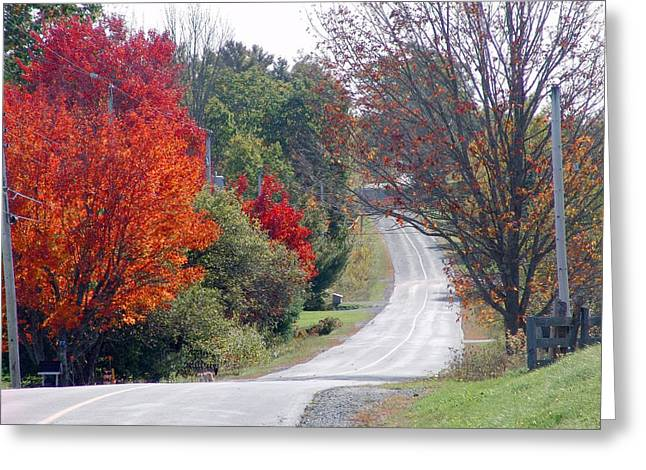 Annapolis Valley Greeting Cards - Autumn On A Country Road Greeting Card by Janet Ashworth