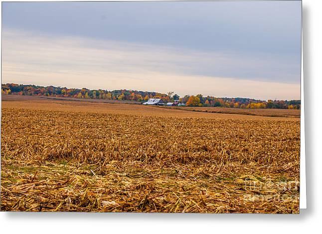 Indiana Autumn Greeting Cards - Autumn On An Indiana Farm Greeting Card by Mary Carol Story