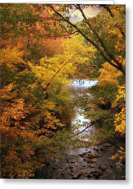 Waterfall Digital Art Greeting Cards - Autumn on Display Greeting Card by Jessica Jenney