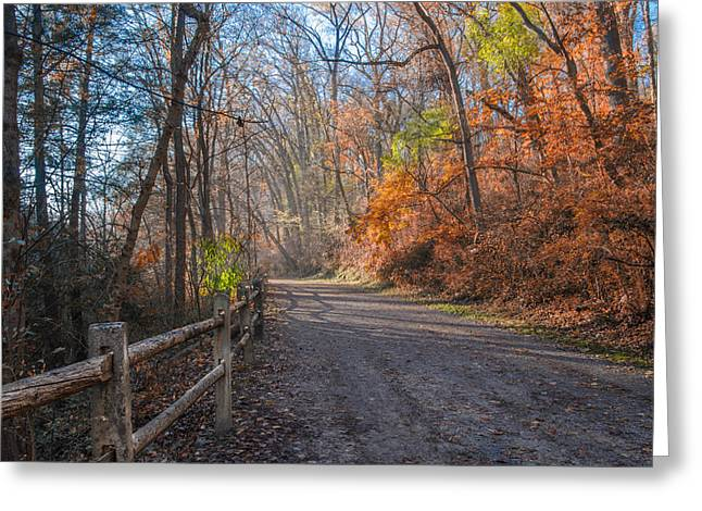 Bill Cannon Photography Greeting Cards - Autumn on Forbidden Drive - Philadelphia Pa Greeting Card by Bill Cannon