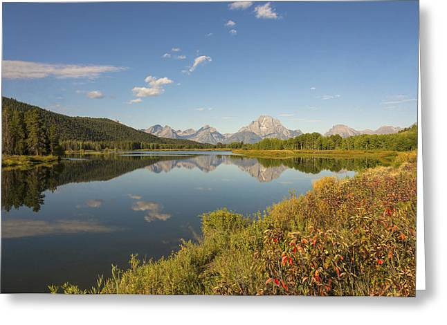 Limited Edition Prints Greeting Cards - Autumn On Oxbow Bend - Mount Moran - Grand Teton National Park Wyoming Greeting Card by Brian Harig