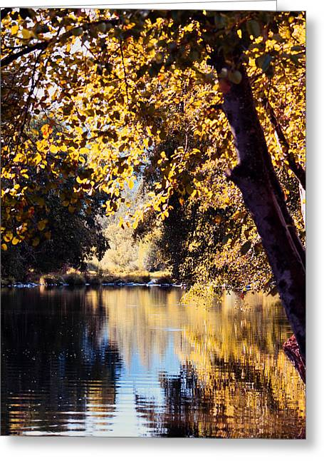 Autumn On The Applegate Greeting Card by Melanie Lankford Photography