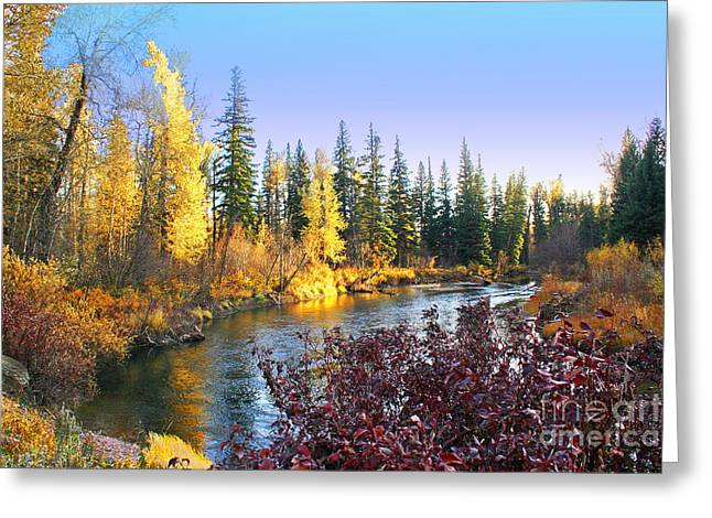 Blackfoot River Greeting Cards - Autumn on the Blackfoot River Greeting Card by H J Levy
