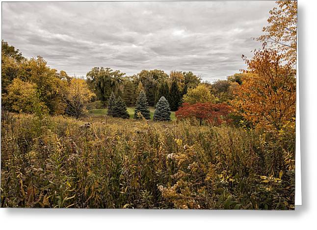 Wisconsin Golf Greeting Cards - Autumn on the Course Greeting Card by CJ Schmit