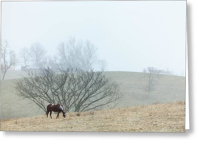 Grazing Snow Greeting Cards - Autumn on the farm Greeting Card by Alexey Stiop