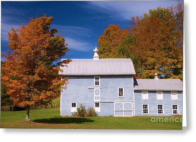 Fall Trees Greeting Cards - Autumn On The Farm Greeting Card by Kathleen Struckle