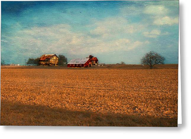 Wheat Field Sunset Print Greeting Cards - Autumn On The Farm Textured Sky Greeting Card by Thomas Woolworth