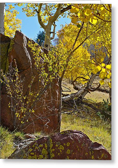 Autumn On The Hillside Greeting Card by Gary Benson