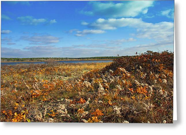 Autumn On The New England Coast Greeting Card by Brooke Ryan