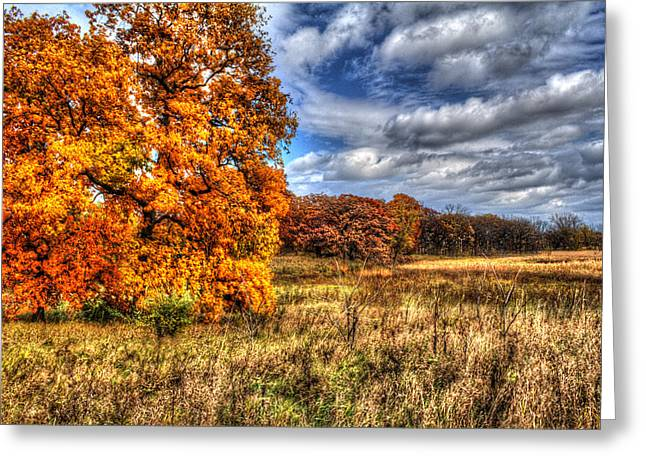 Outlook Greeting Cards - Autumn on the Prairie Greeting Card by Roger Passman