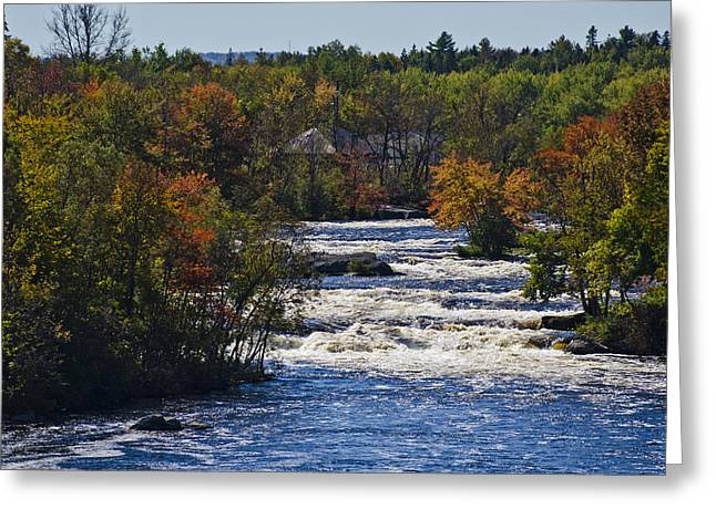 Roger Lewis Greeting Cards - Autumn on the River Greeting Card by Roger Lewis