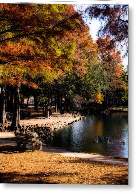 Autumn On Theta Greeting Card by Lana Trussell