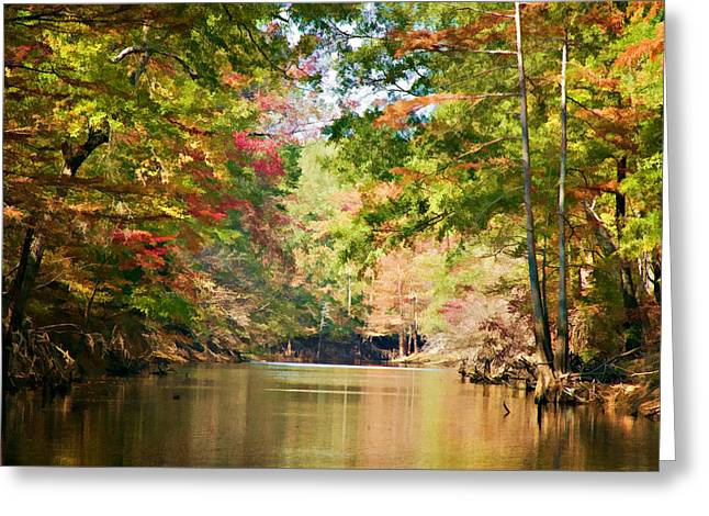 Sloughs Greeting Cards - Autumn Over Golden Waters Greeting Card by Lana Trussell
